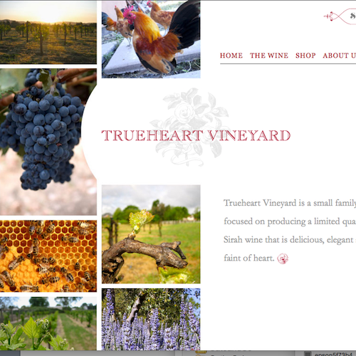 trueheart vineyards image for catanzaro creations
